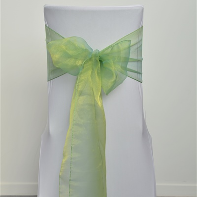 Lime Green Organza Sash