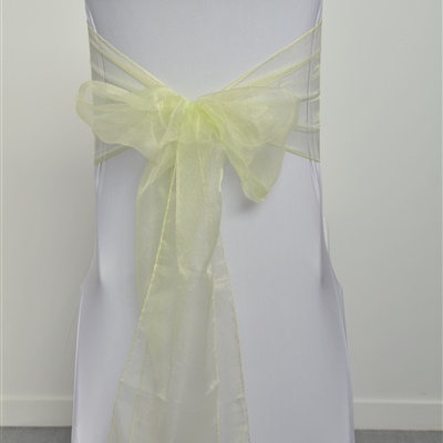 Light Green Organza Sash