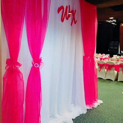 Backdrop Curtains with Pink Strip and Whiteout Curtains