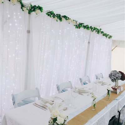 6m x 3m Curtain Lights with Artificial Garland